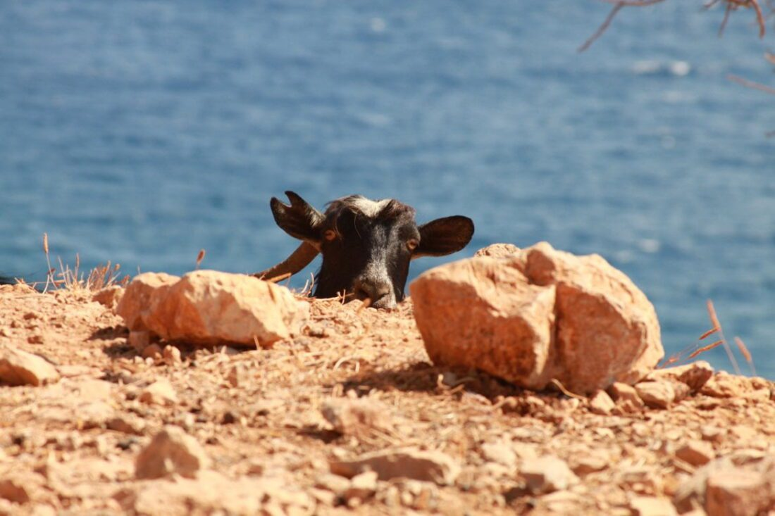 Kreta-wyspa jak wulkan gorąca