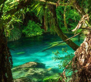 spacer po blue spring