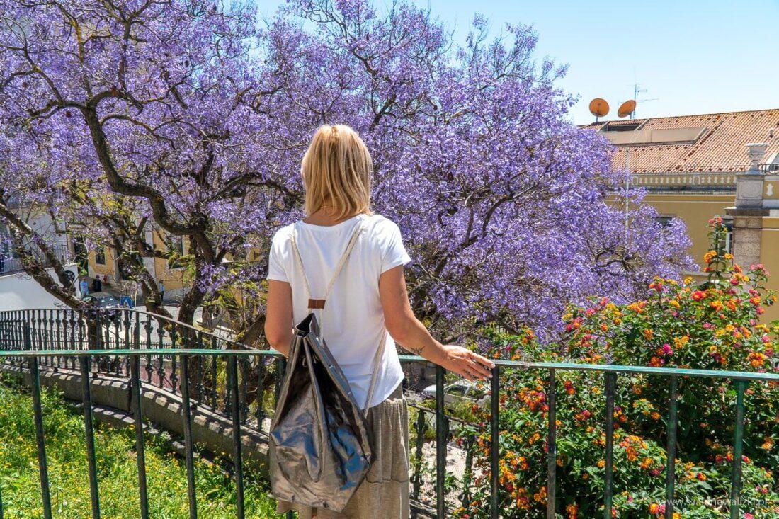 najbardziej instagramowe miejsca lizbony