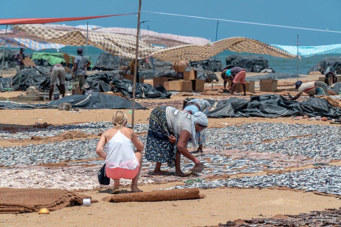 fish market w Negombo