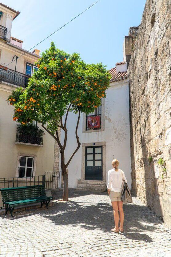 Nieznane ciekawostki i miejsca w Lizbonie