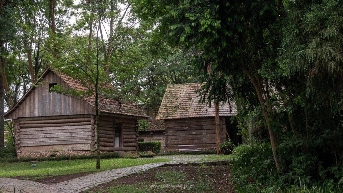 polonia w brazylii