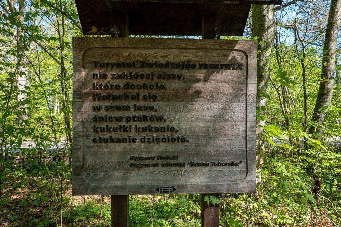 tablice informacyjne w rezerwacie sosny